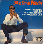 Stevie Wonder Cover1