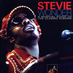 Stevie Wonder Cover11