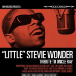 Stevie Wonder Cover21