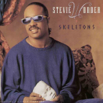 Stevie Wonder Cover30