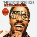 Stevie Wonder Cover31