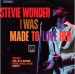 Stevie Wonder Cover35