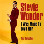 Stevie Wonder Cover44