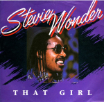 Stevie Wonder Cover47