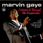 Marvin Gaye Cover46